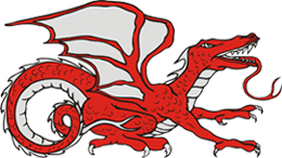 Thermo Dragons - logo